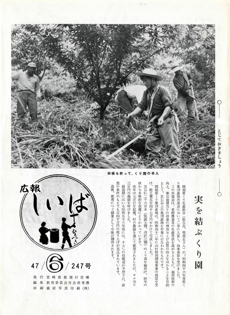 広報 しいば 第247号 1972年6月発行の表紙画像
