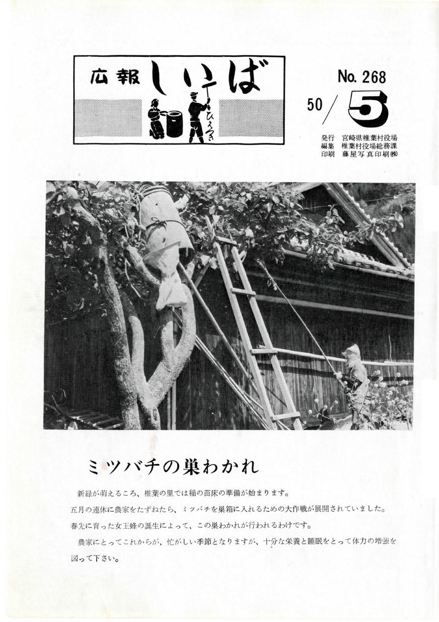 広報 しいば 第268号 1975年5月発行の表紙画像