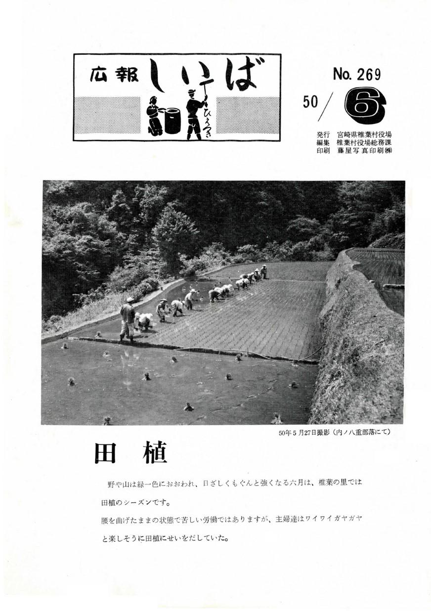 広報 しいば 第269号 1975年6月発行の表紙画像