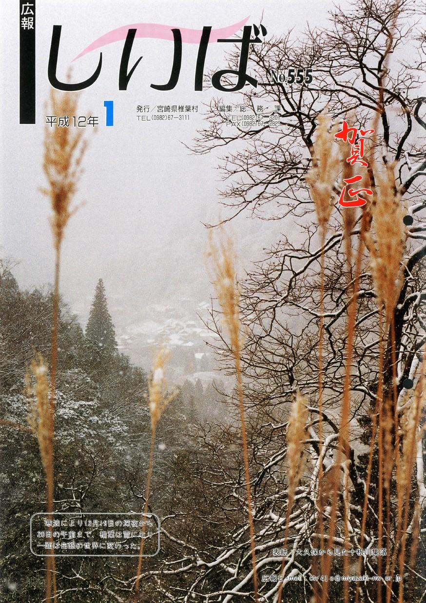 広報しいば 第555号 2000年1月発行の表紙画像