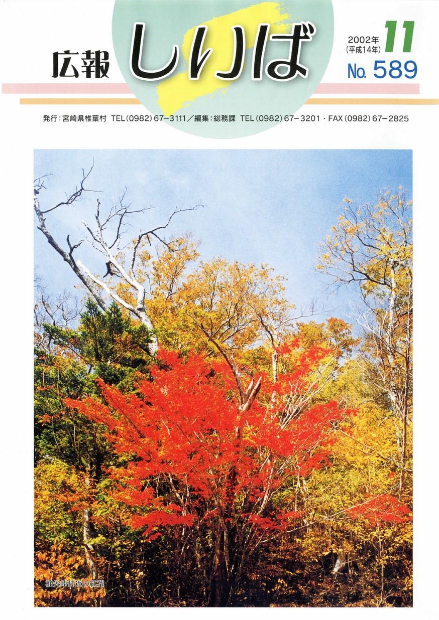 広報しいば 第589号 2002年11月発行の表紙画像